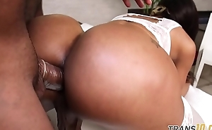 Curvy ts anally screwed on all fours