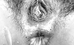 The Clitoris Compilation 2